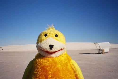 Flat Eric in White sands by Kazu9, via Flickr