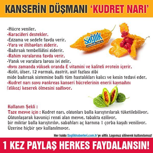 Kudret Narı'nın faydaları! #kudretnarı #sağlık #sağlıkhaberleri #beslenme #şifalıbitkiler