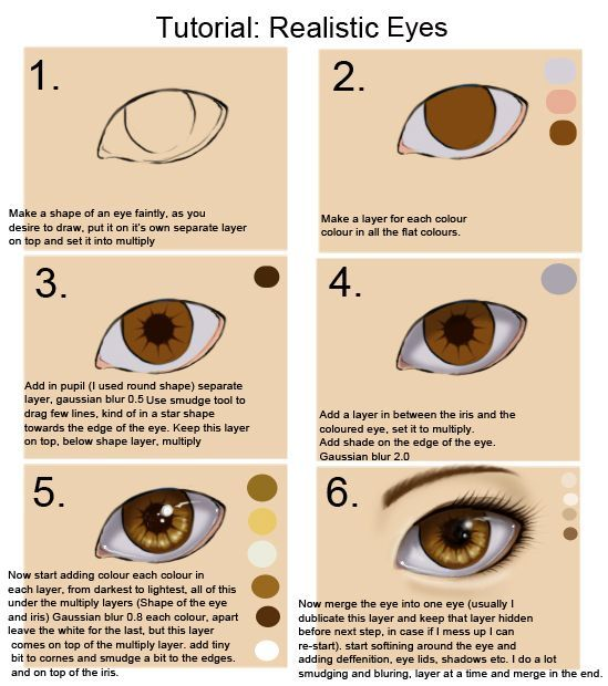 Just a picture that shows you how to draw the eye so it looks more real;):