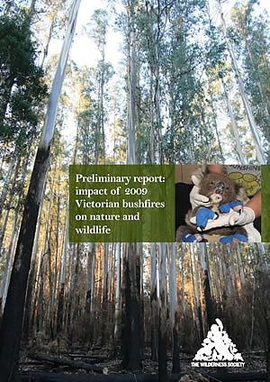 Impacts of the bush fires on Victorian wildlife