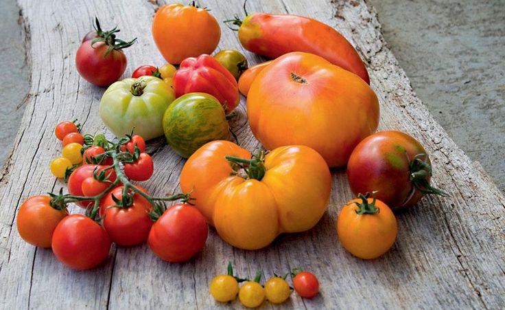 die besten 25 tomatenanbau ideen auf pinterest anbau. Black Bedroom Furniture Sets. Home Design Ideas