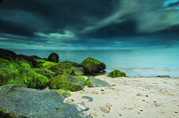 Fotografia ślubna, Fotografia dziecięca, ciążowa, Małopolska, Szczawnica, Nowy Targ,Kraków: Let's see how is the sea :) - Bray, Ireland