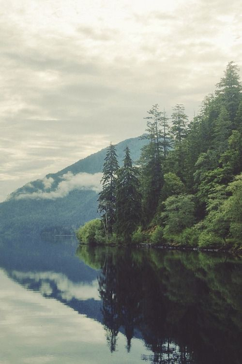 Take me somewhere green, with mountains so tall bodies of water so wide I forget there's a reality at all