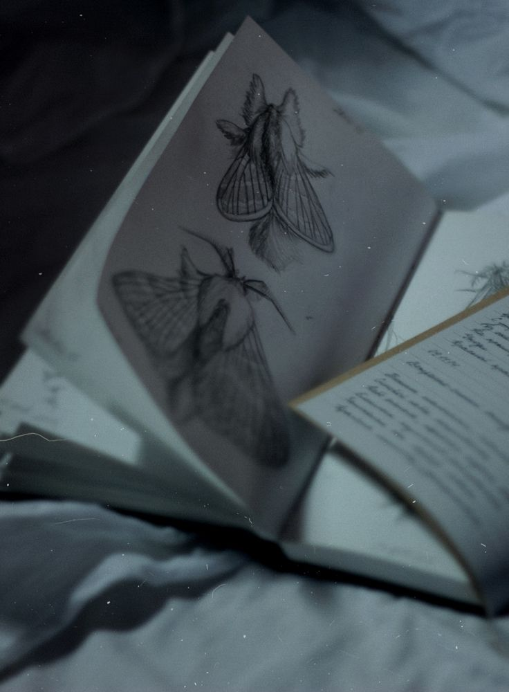 Raven Cycle - Gansey's Journal