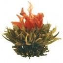 flor de té- Flor de Lluvia