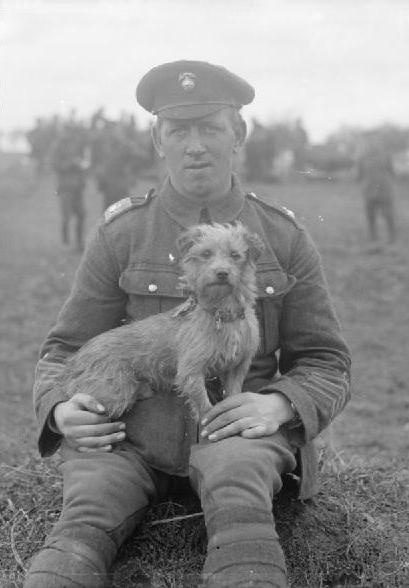 WWI. 'Sammy', the mascot of the Northumberland Fusiliers, was gassed during the Second Battle of Ypres which began on 22 April 1915.