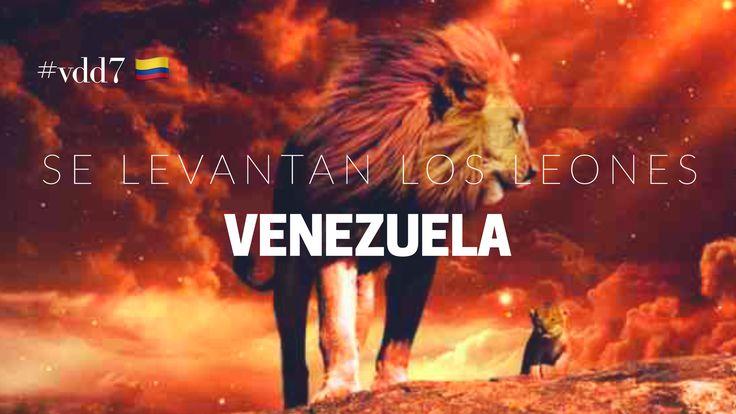 El Eterno esta despertando al ejercito de leones en Venezuela, leones cuyo rugido (adoracion) es como el estruendo que mueve las aguas de aceleración profetica. ¿Que esta pasando?... algo esta pasando. #ekilem #vdd7 #venezuela 🦁🇨🇴 Ver video: https://youtu.be/rbY3subgJc4