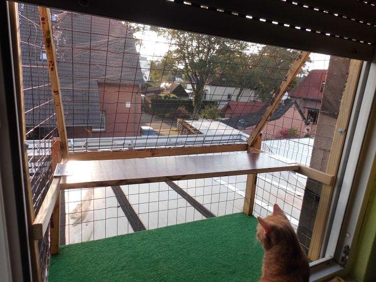 die besten 25 katzengarten ideen auf pinterest katzengras selbermachen katzen spielzeug und. Black Bedroom Furniture Sets. Home Design Ideas