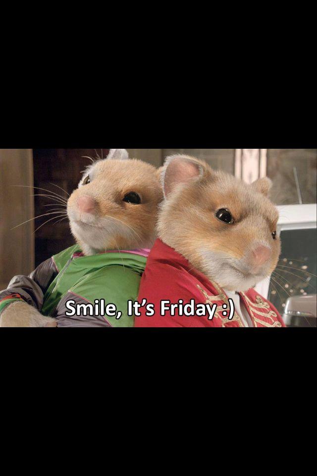 d483dfc66092a7cc3d2b5bb15a127247 car photos hamsters hamster wheel car ads kia soul commercial uses pet rodents to show