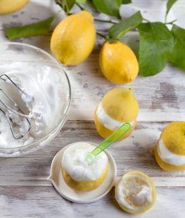 Citron givré   Hachette Pratique