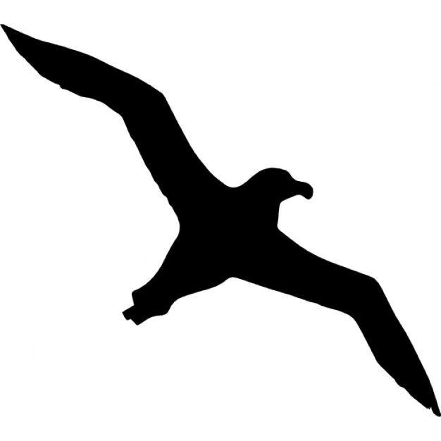 seagull silhouette clip art - 512×512