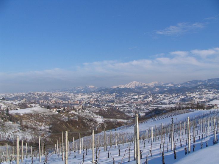 Colline innevate viste da Cremolino