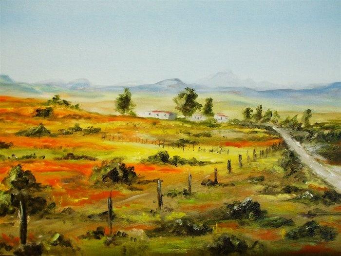 Spring in Namakwaland RSA by Antionette du Bruyn