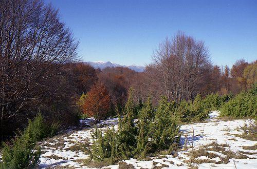 First snow of the year Kilkis Kentriki Makedonia Greece