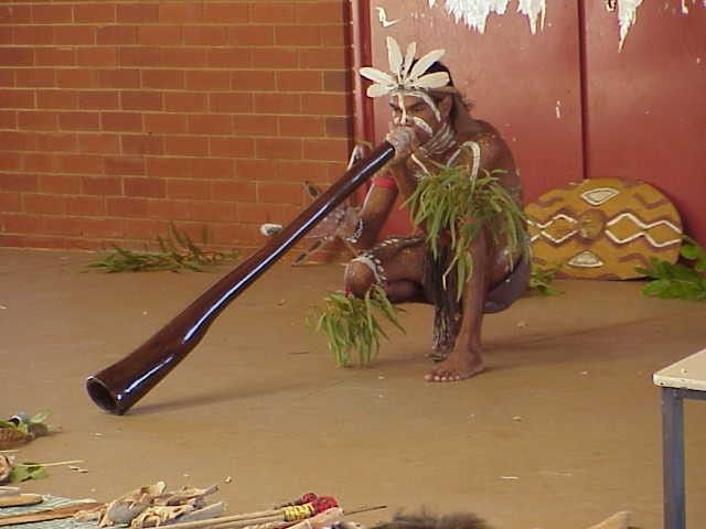 didg·er·i·doo    noun  /ˌdijərēˈdo͞o/   An Australian Aboriginal wind instrument in the form of a long wooden tube, traditionally made from a hollow branch, which is blown to produce a deep, resonant sound, varied by rhythmic accents of timbre and volume.