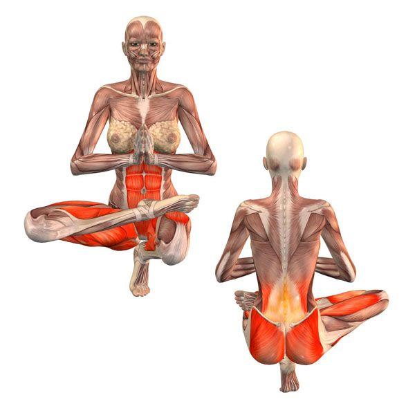 220 best asanas images on Pinterest | Yoga poses, Physical ...