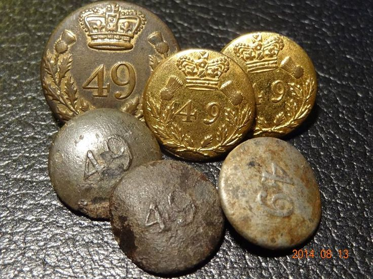 Officers and Enlisted Mens  Buttons- The 49th (Hertfordshire) Regiment of Foot)- in the Canadas- 1802-1815- (Rollason Collection, Canada)