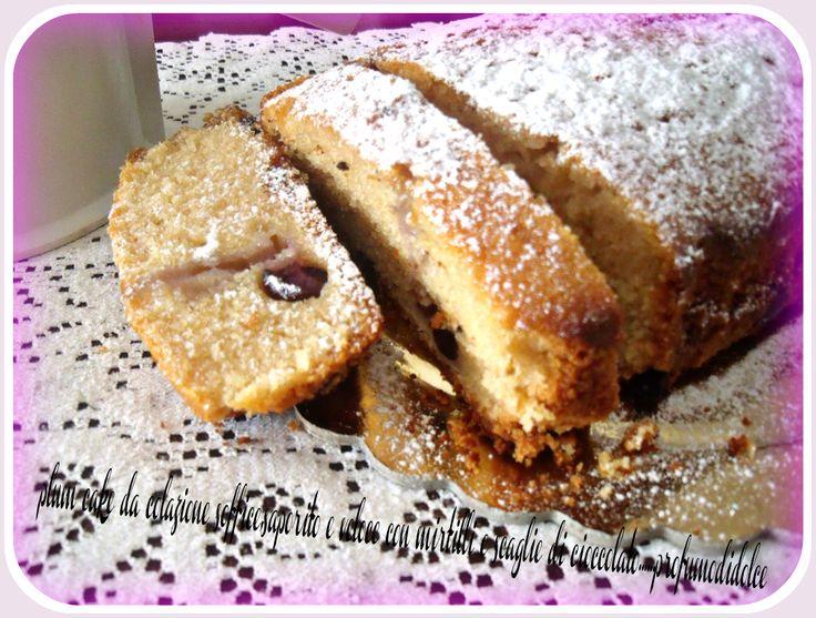 gustatelo a merenda con una profumata tazza di te nero.....http://blog.giallozafferano.it/profumodidolce/plum-cake-da-colazione-soffice-saporito-e-veloce-con-mirtilli-e-scaglie-di-cioccolato/