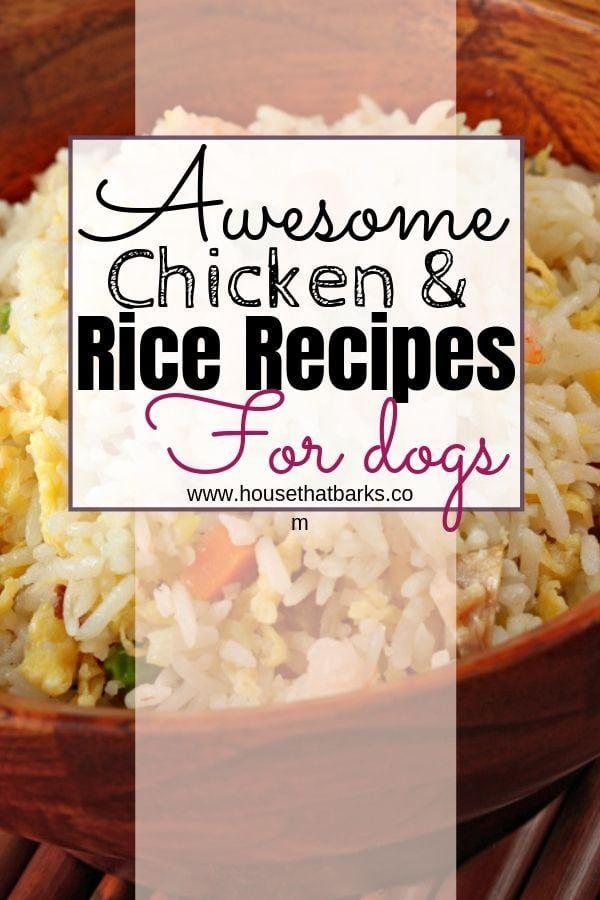 Upset Tummy And Diarrhea Recipe Dog Recipes Homemade Dog Food