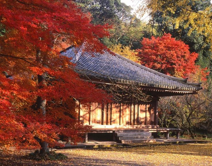 富貴寺 Fuki Temple (in  autumn)