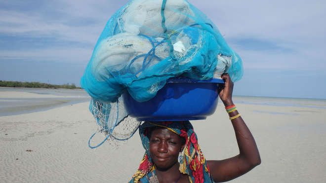 Mosquito net fishing in Kenya | Zoological Society of London (ZSL)
