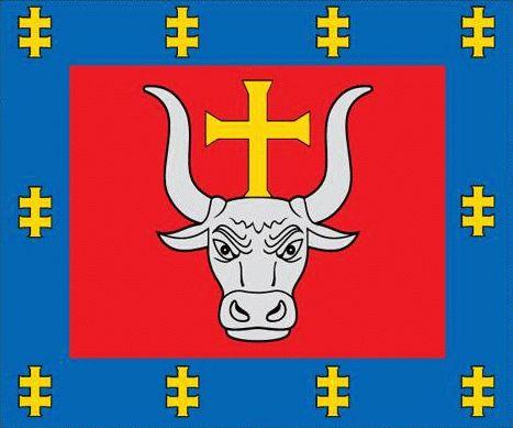 Kaunas County flag (Lithuania)