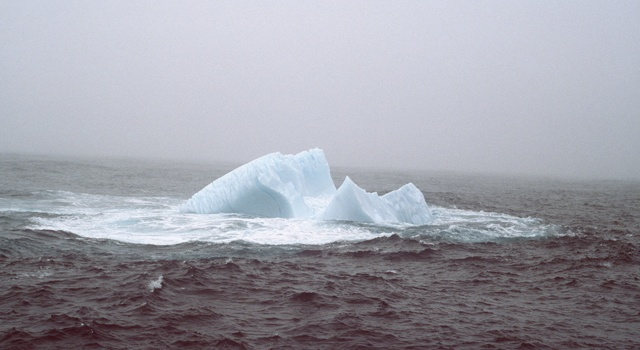 Newfoundland, 1984