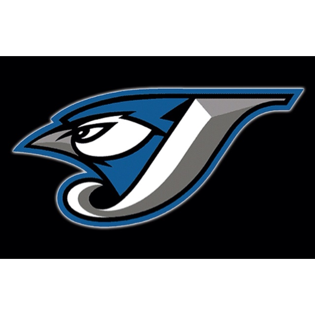 Toronto Blue Jays -- This logo did away with the red Canadian Maple Leaf, which upset fans!