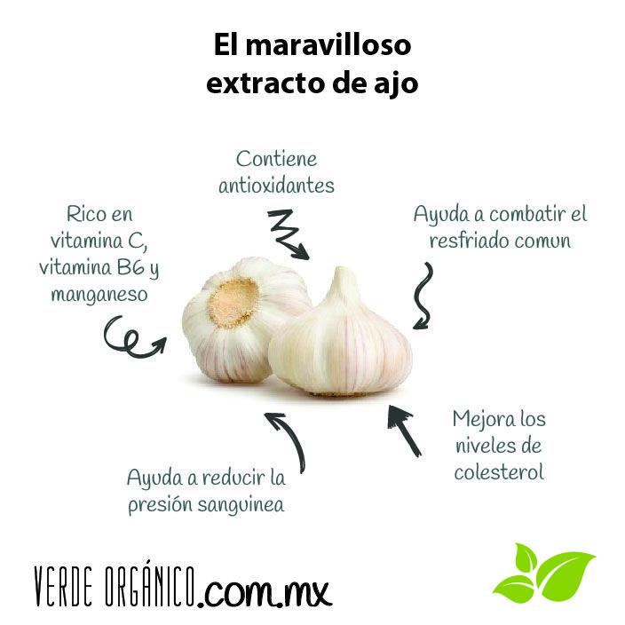 El maravilloso extracto de ajo - Verde Orgánico