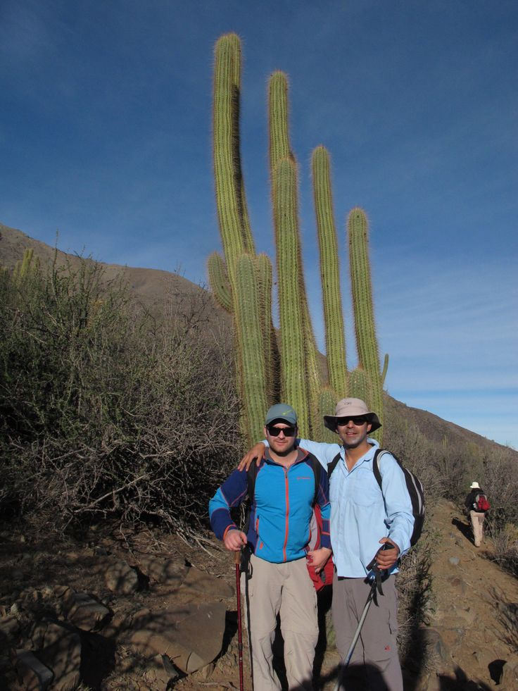 http://cumbrenueva.cl/excursiones/trekking/mocoen.html