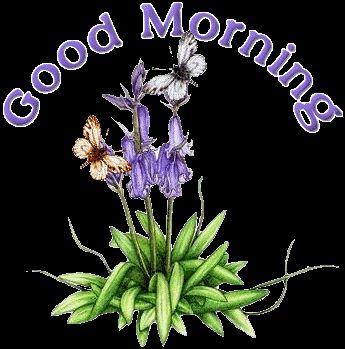 "Image ""animated-good-morning-image-0014"" in Animated Good Morning Images - AnimatedImages.org"
