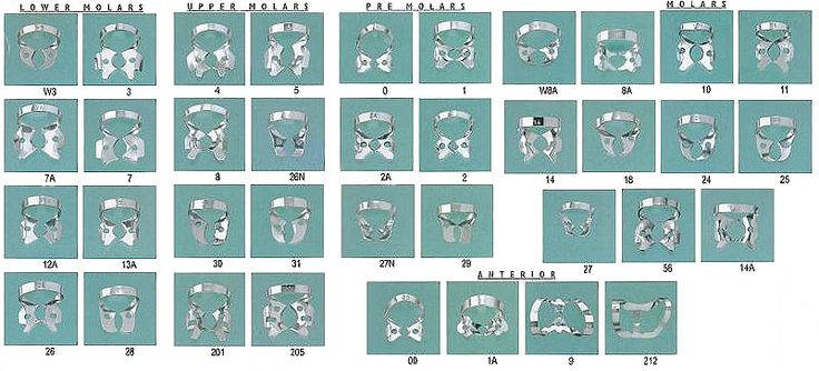 Dental Clamps Dental Assistant Pinterest Dental