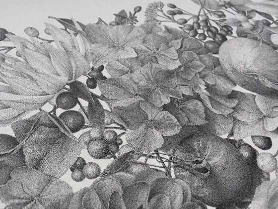 aol-xavier-casalta-autumn (6)