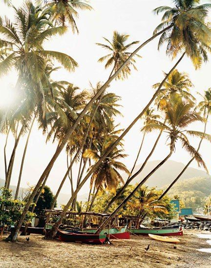 The old French capital of Soufrière was founded at the foot of the Pitons in St. Lucia in 1745. #palmtrees