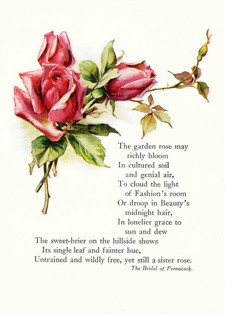 Fairfax Digital Russian Love Poem 27