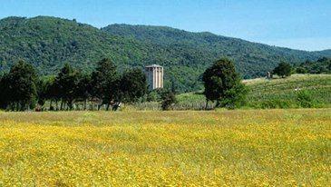 Ο Πύργος του Καβαλλάρη (Μιλούτιν) της Ιεράς Μονής Εσφιγμένου / Kavallari Tower (Miloutin) of the Holy Monastery of Esphigmenou