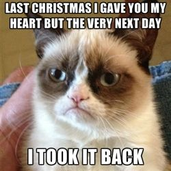 Grumpy Cat 1 - Last Christmas I gave you my heart But the very next day I took it back