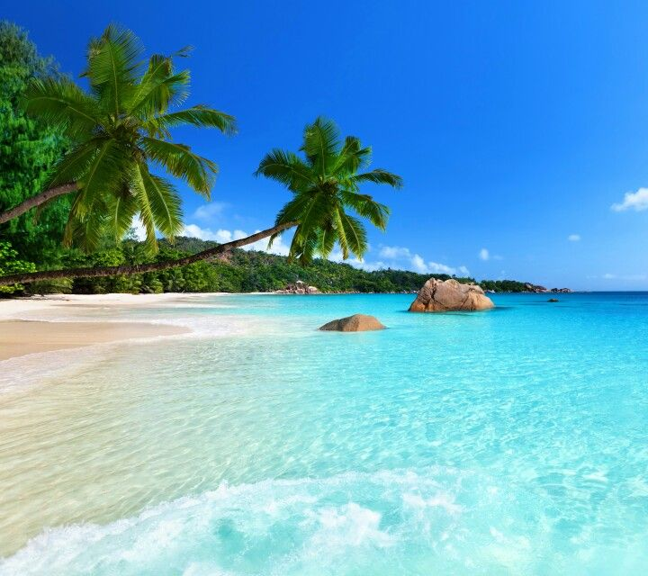Nice Wallpapers Tropical Paradise Cool Stuff Salt Amazing Places Phone Pictures Life Beach