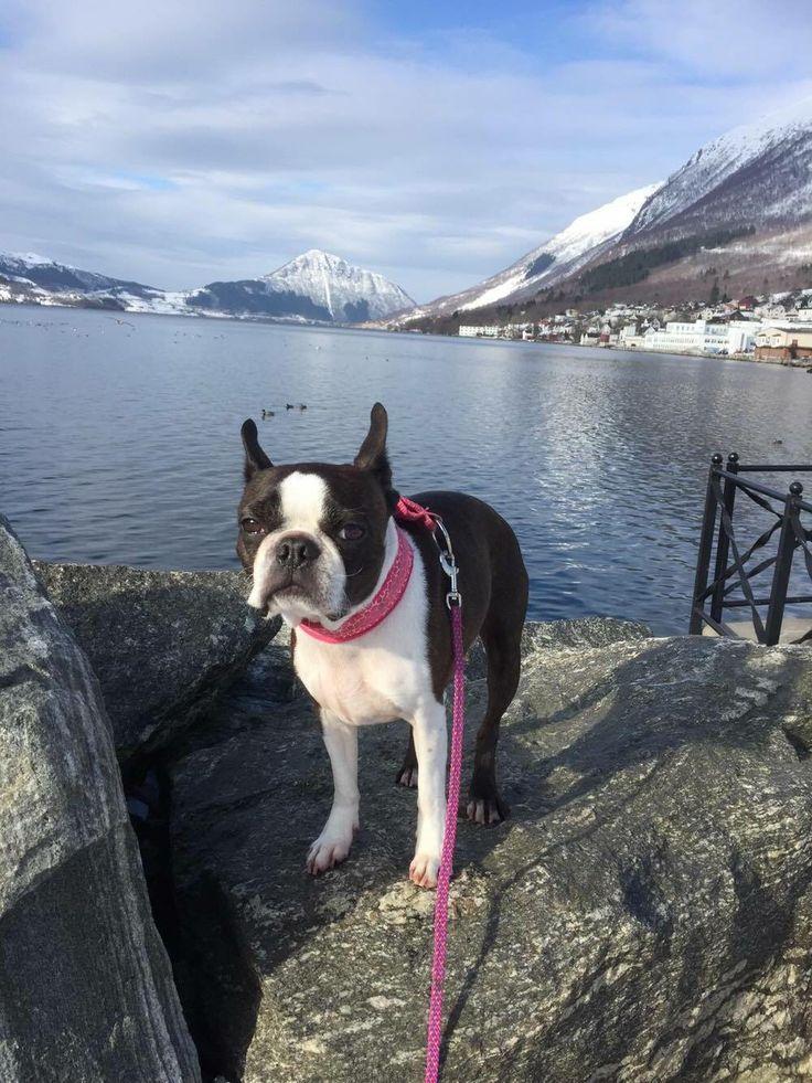 Tuulikki i Ørsta