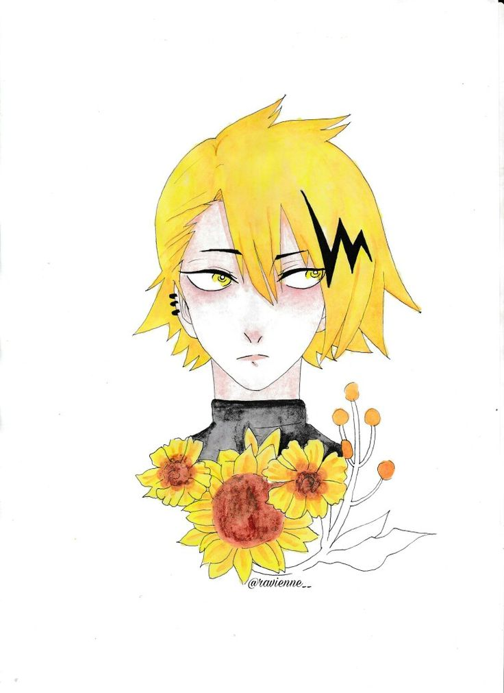 Kaminari Denki with Sunflower
