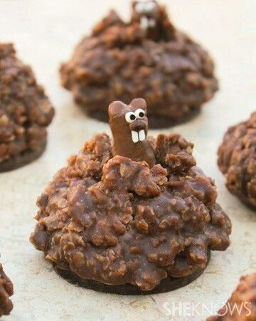 Pop up groundhog cookies