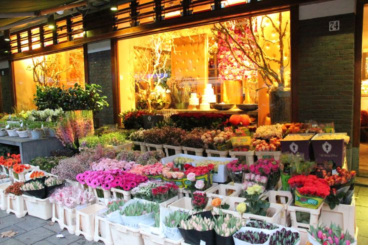 * #FLOWERSHOP SCHEEPSTRA This inspirational shop is one of the best in Amsterdam. They make bouquets for all occasions including fully decorated Christmas trees. They have local delivery service. This shop is located in the Rivierenbuurt in #Amsterdam on Scheldestraat 74-76. http://www.bloemenscheepstra.nl