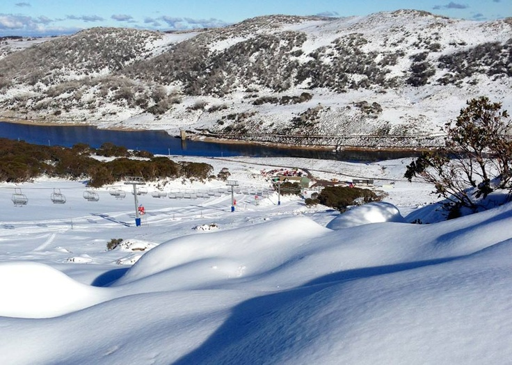 Bobby has never seen snow and neither have the kids... Falls Creek, Victoria