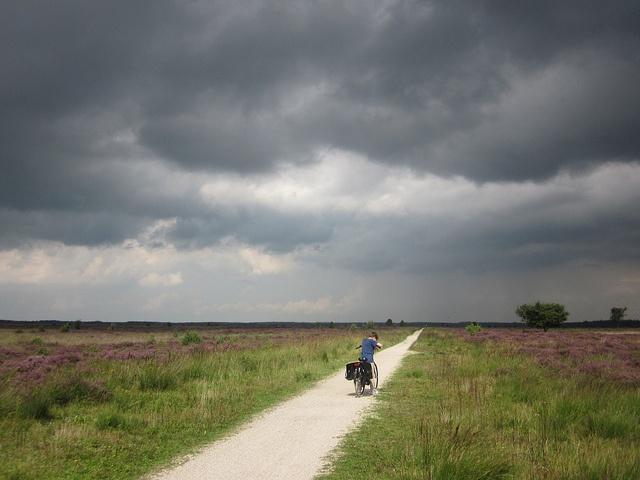 Dutch sky by Barbara Lin, via Flickr