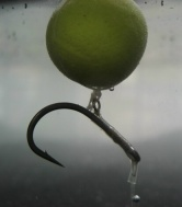 Fishing Rig Claw Style