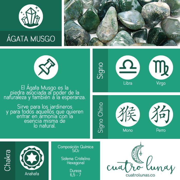 Encuentra Tu Lado Natural Con El ágata Musgo Cristales De Sanación Minerales Y Piedras Preciosas Piedras Y Cristales