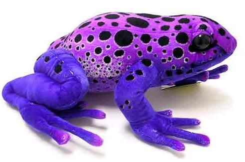 Purple Poison Dart Frog - Amazing color. Just don't touch it!