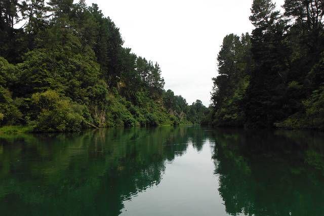 What a fun ride at NZ Riverjet in Rotorua.  #NewZealand #Rotorua #Speed #Splash #River