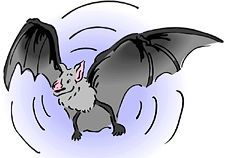 Game: How do bats find food? : Preschool Science Experiments, Lessons and Activities