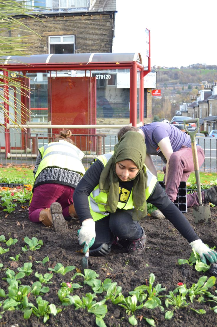 Bradford Works - planting up a flower bed in Shipley